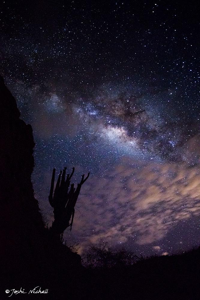 Milchstraße von Joshi Nichell über der Desierto de la Tatacoa